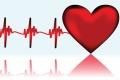 Ασφαλιστική κάλυψη & Ιατρικές εξετάσεις των αθλητών
